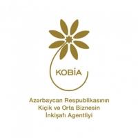 Azərbaycan Respublikasının Kiçik və Orta Biznesin İnkişafı Agentliyi